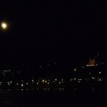 Wieder auf dem Rhein - MS Rhenus